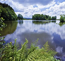 camping vosges lac