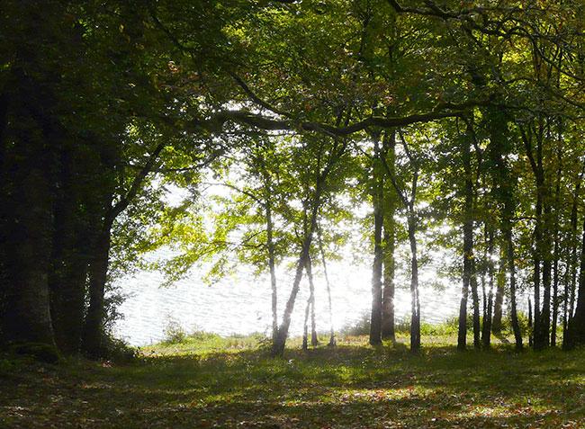 Lac du moulin de bannac