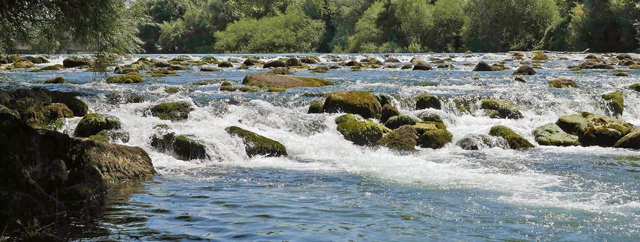 camping Les 3 Ours rivière