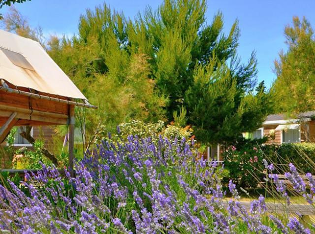 Camping Domaine de La Palme - Occitanie