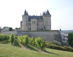 Camping Les Nobis d'Anjou