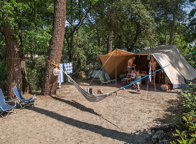 camping des Pins location emplacement-8