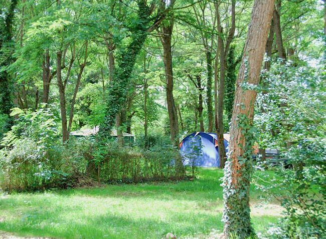 camping Le Sagne emplacement tentes-4