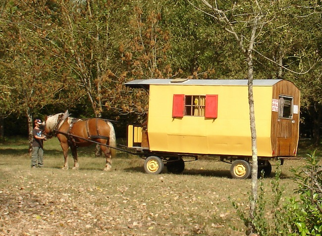 camping Les 3 Ours cheval-6